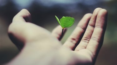 しあわせの共通項|社会の中での役割と自己成長