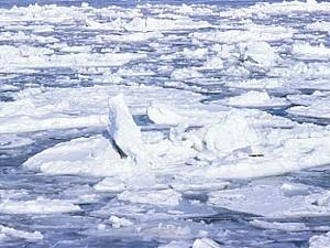 【よくわかる】温暖化脅威派のウソ|騙されているグレタちゃん